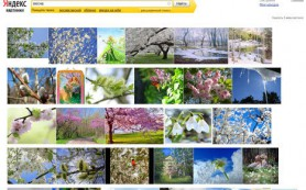 Сервис «Яндекс.Картинки» тестирует новый интерфейс