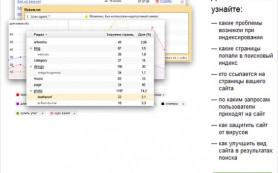 Яндекс.Вебмастер уведомит об обнаруженных на сайте дорвеях