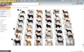 Bing тихо избавился от «Визуального поиска»