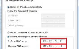 Началась регистрация бесплатных доменов .pirate