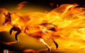 Google получит пользователей «Яндекса» в Firefox