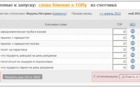SeoPult: добавление в продвижение ключевых слов из счетчиков статистики