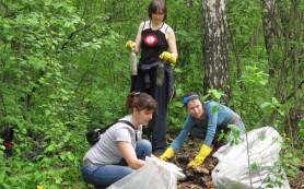 Веб-активисты России в лесу собрали 350 тонн отходов