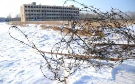 Новосибирским заключенным приоткрыли окно в Интернет
