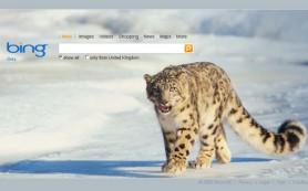 Bing запустил рекламу, обвиняющую Google в проплаченности результатов поиска