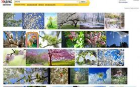 «Яндекс» начал объединять в серии картинки в результатах поиска
