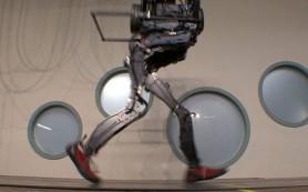 Google может начать производство роботов