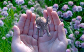 Google инвестирует $542 млн в разработчика 3D-технологий Magic Leap