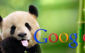 Google не обновлял алгоритм «Панда» с октября 2014 года