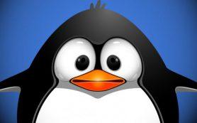 Google Penguin больше не будет понижать сайты за спамные ссылки