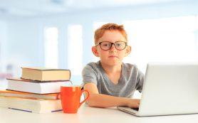 Выбираем ноутбук для школьника