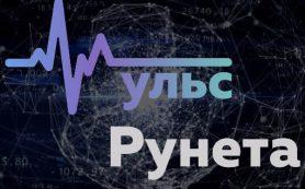 РАЭК запускает Пульс Рунета