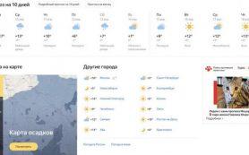 Яндекс поможет в поиске домашних животных