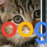Google: кавычки не спасут от дублированного контента