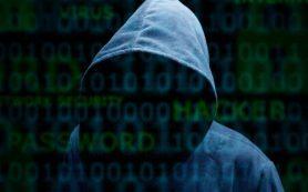В российской армии появятся кибервойска