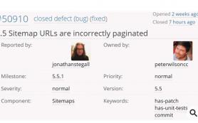 В работе WordPress 5.5 обнаружен ещё один баг