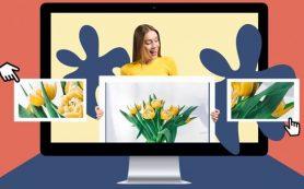 Десктопный редактор галерей стал доступен всем блогерам Яндекс.Дзена